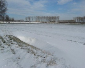 Zeeuwse sneeuw