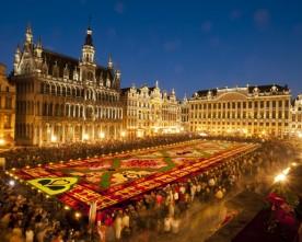 Succesvolle editie Bloementapijt Brussel