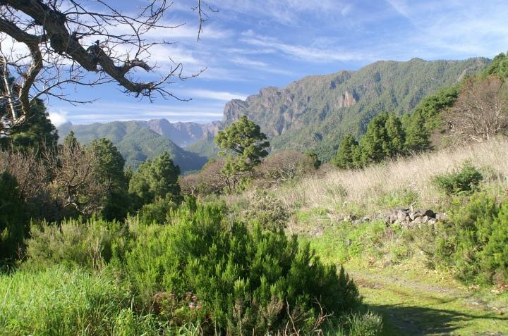 Een natuurvakantie op de Canarische Eilanden