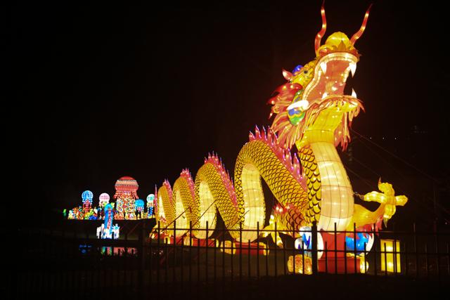 China Lights in Antwerpen