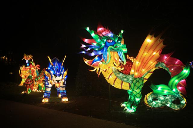antwerpen-zoo-china-light2