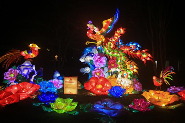 antwerpen-zoo-china-light5