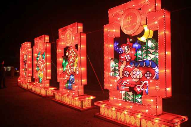 antwerpen-zoo-china-light6