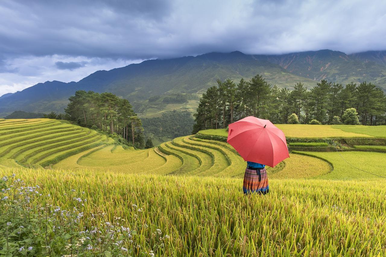 Voortaan met een e-visum naar Vietnam reizen