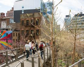 New York's Highline Park