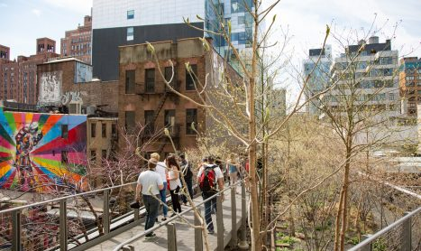 New York's Highline Park