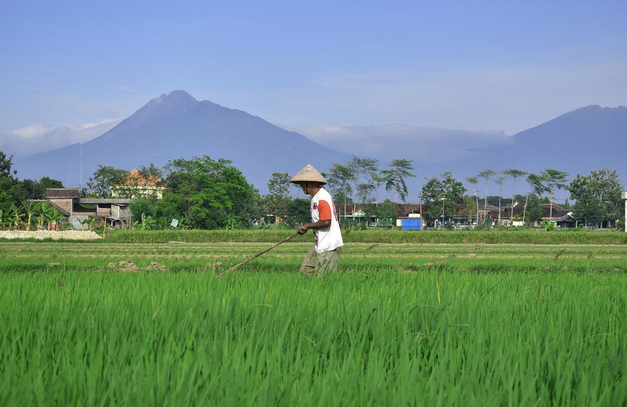 Rondreizen door Azië steeds populairder