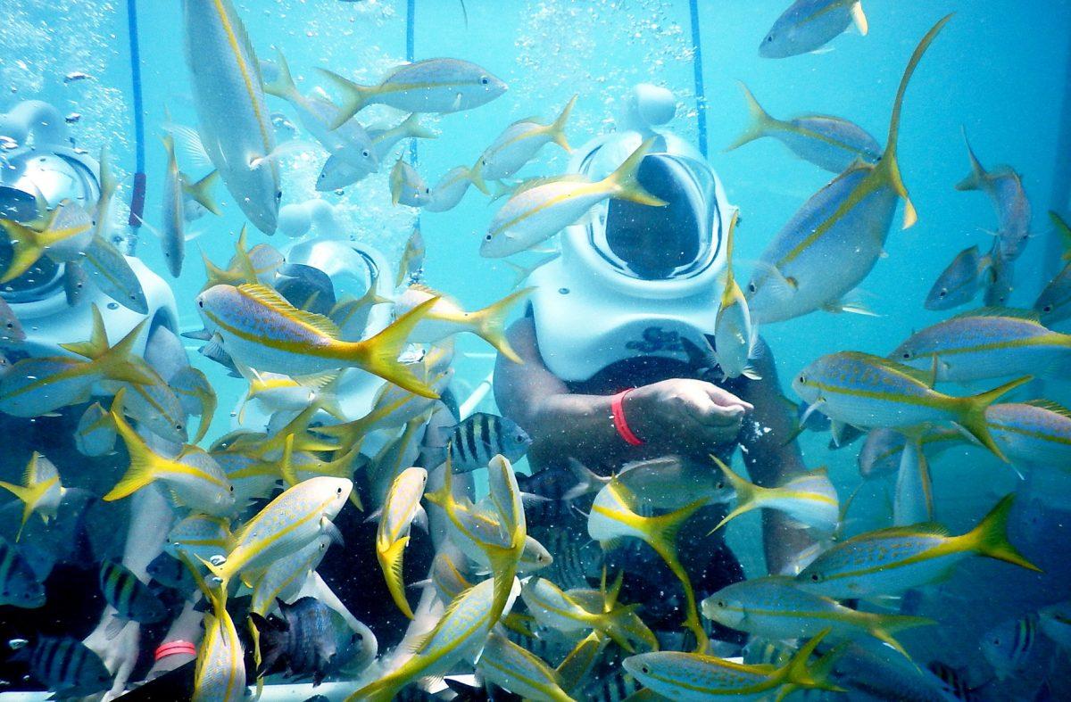 5 tips voor Sint Maarten